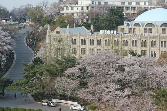 Top 5 Most Beautiful Korean University Campus 2