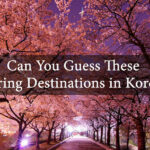 Can You Guess These Spring Destinations in Korea?