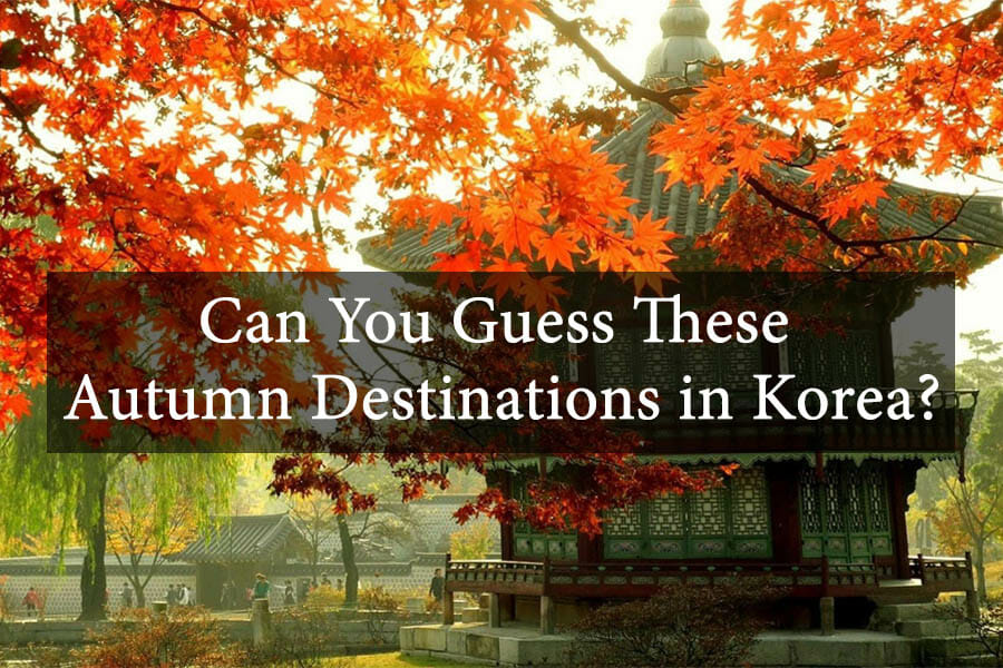 Can You Guess These Autumn Destinations in Korea? 5