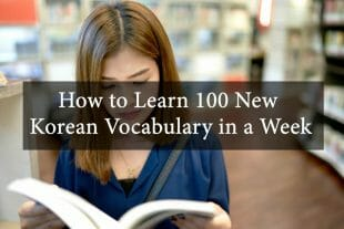 How to Learn 100 New Korean Vocabulary in a Week 2