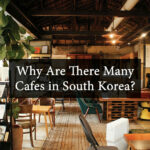 Why Are There Many Cafes in South Korea?