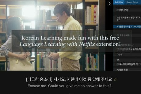 Korean Learning made fun with this free 'Language Learning with Netflix' extension! 1